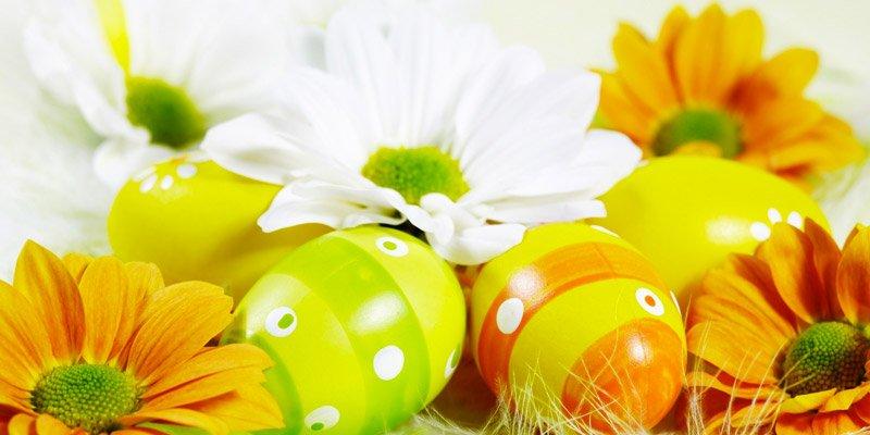 Offerta Pasqua Agriturismo Residence Toscana Mare
